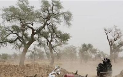 Mayo-Sava: Seven dead four wounded and food stolen due to Boko Haram attacks.
