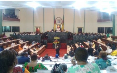 Cameroon: Government members defend budget at the National Assembly
